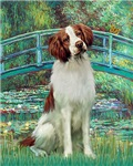 LILY POND BRIDGE<br>& Brittany Spaniel