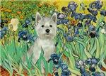 IRISES<br>& West Highland Terrier