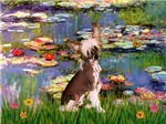 WATER LILIES<br>& Chinese Crested