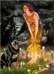 MIDSUMMER'S EVE<br>& Rottweiler