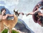 CREATION OF THE LLAMA