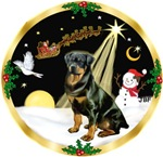 NIGHT FLIGHT<br>& Rottweiler