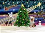 CHRISTMAS MAGIC<br>& Yorkshire Terrier (#2)