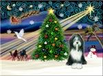 CHRISTMAS MAGIC<br>& Bearded Collie