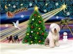 CHRISTMAS MAGIC<br>& Old English Sheepdog