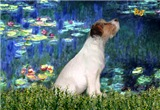 LILIES (#5) <br>& Jack Russell Terrier