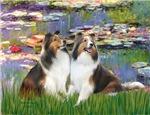 LILIES #2<br>& Two Shetland Sheepdogs