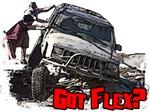 Got Flex?