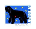 Starry Barbet