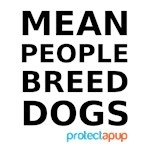 MEAN PEOPLE BREED DOGS