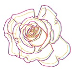OYOOS Flower Abstract design