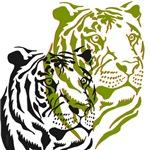 OYOOS Tigers design
