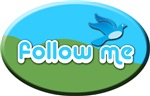 Follow Me Round