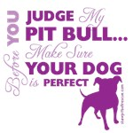 Before You Judge My Pit Bull...