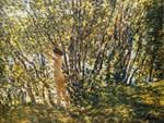Hassam - Nude in Sunlit Wood