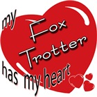 My Fox Trotter Has My Heart