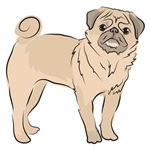 Cute little PUG DOG puppy doggy