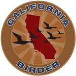 California Birder