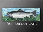 Salmon Dave