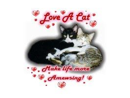 Love A Cat
