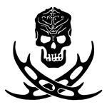 Klingon Skull and Bat'leths