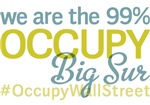 Occupy Big Sur T-Shirts