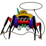 cowboy spider