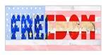 USA Freedom Flag