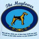 The Mayflower Dog Show