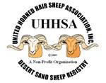Desert Sand Sheep Logo