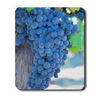 gifts! Napa Valley Mousepads