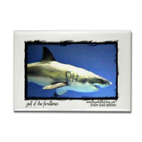 Sf bay gifts - Gulf of the Farallones Magnets
