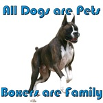 Boxers are Family