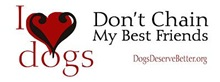 DDB Bumper Stickers-35 Different Designs