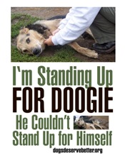 I'm Standing Up for Doogie