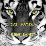 Cat I may be, pussy I'm not