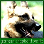 German Shepherd Smile!
