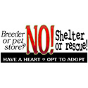 Shelter or Rescue
