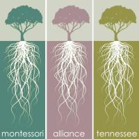 Montessori Alliance of Tennessee