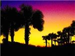Coastal Tropical Landscape Abstract Sunrise