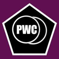 PWC Comic Inspired