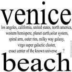 367.venice beach