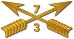 3rd Bn 7th SFG