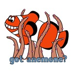 Got Anemone?