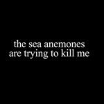 Anemone Paranoia