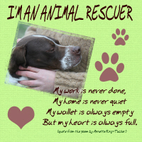 Animal Rescuer Collection