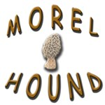 Morel Hound---for Man's Best Friend!