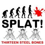 13SB - Splat