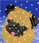 Tasting Snowflakes Pug