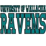 University of Wallachia Ravens Mascot